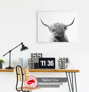 Higland Cow - Canvas Mérida Fine Print Art