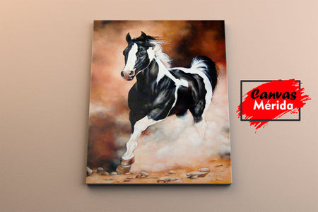 Runing horse - Canvas Mérida Fine Print Art
