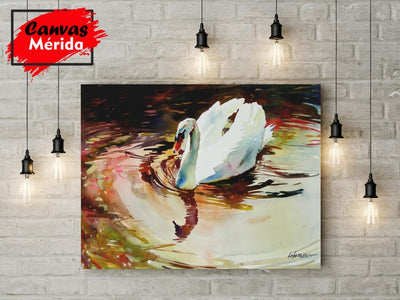 Swan At Sunset - Canvas Mérida Fine Print Art