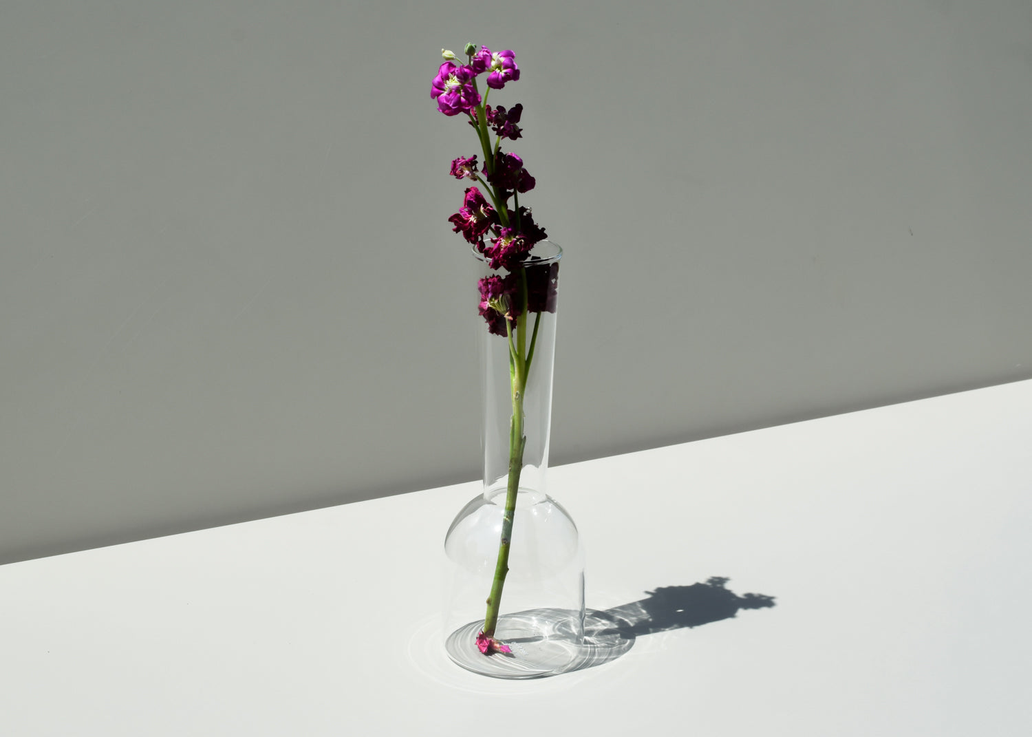 A tall and skinny clear vase from Good Thing, the Gather Vase.