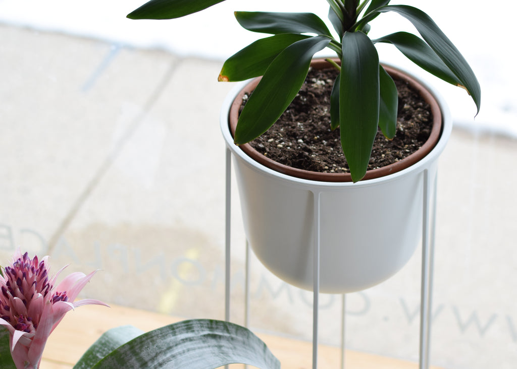 The Wire Pot with Wire Base is a tall plant display designed by Norm Architects.