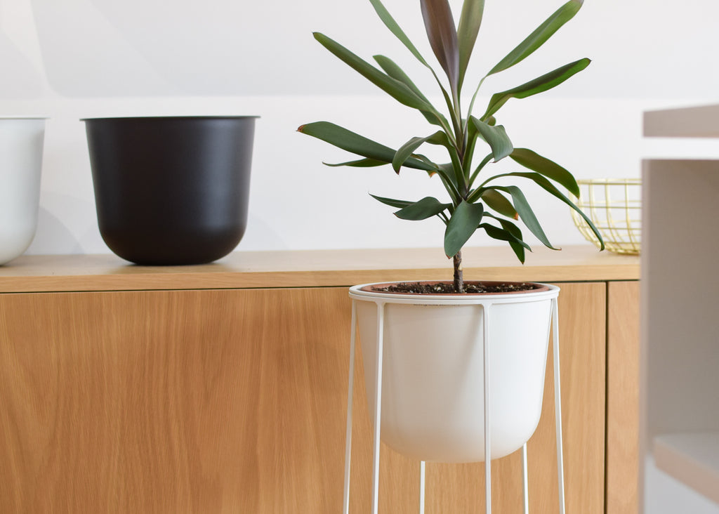 The Wire Pot planter and Wire Base from Danish design brand Menu.
