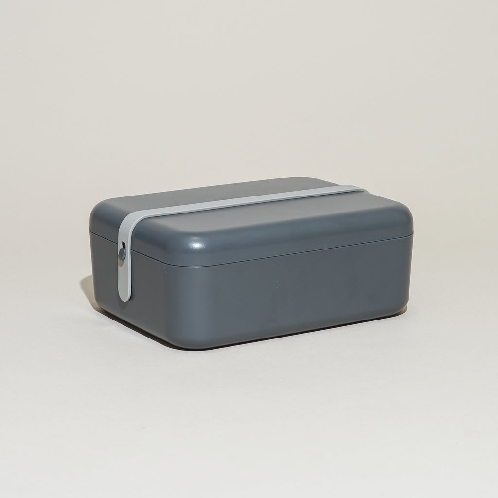 The Keep-It Cool Lunch Box from Rig-Tig by Stelton.