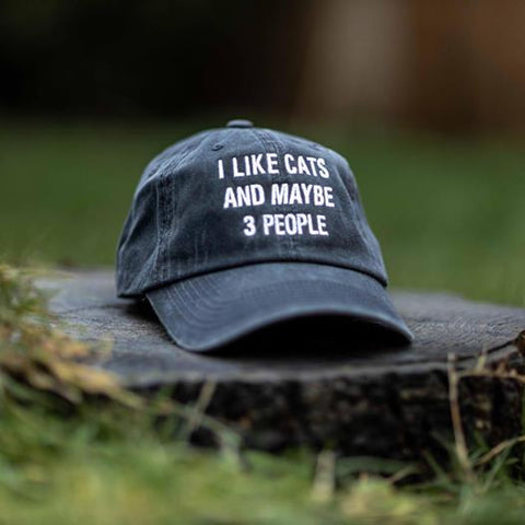 I like Cats and Maybe 3 People Classic Charcoal Hat