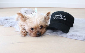 My Dog is my Soulmate Distressed Classic Black Hat