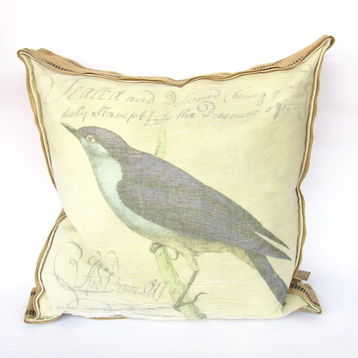 Bird Canvas Pillow