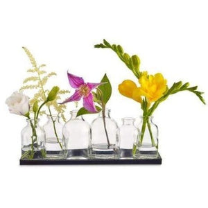 Buddy Glass Vase Set