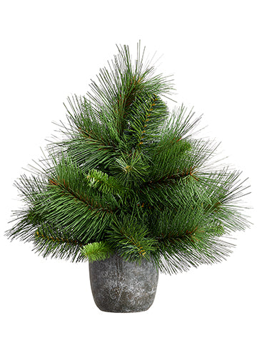 Small Pine Tree in Pot, 11 inch
