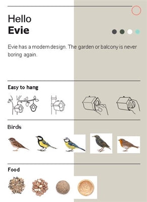 Evie Bird Feeder