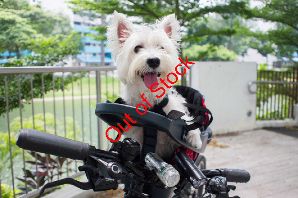 Buddyrider & buddy rider booster pet seatNZ Australia New Zealand Cycling with your dog