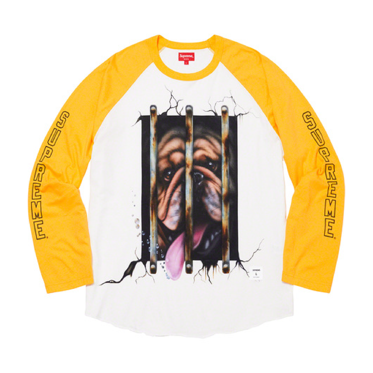 Dog Raglan Long Sleeve T-Shirt (Yellow)