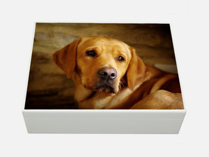 Large A4 size white wooden box with your own pet photo(s) 33.5 x 26 x 10 cm