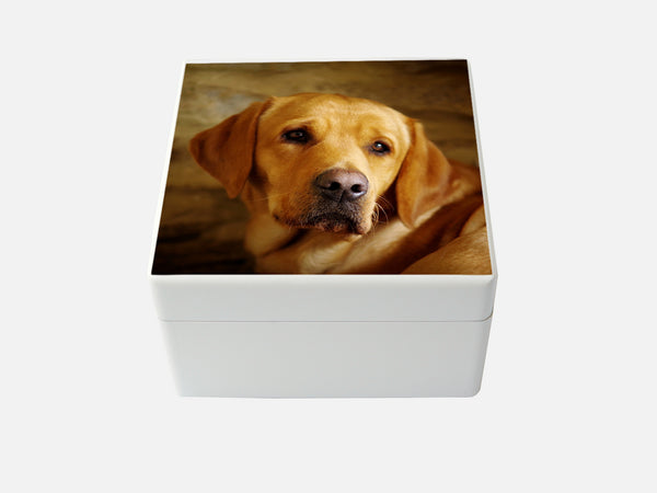 Design your own box - Medium Square box