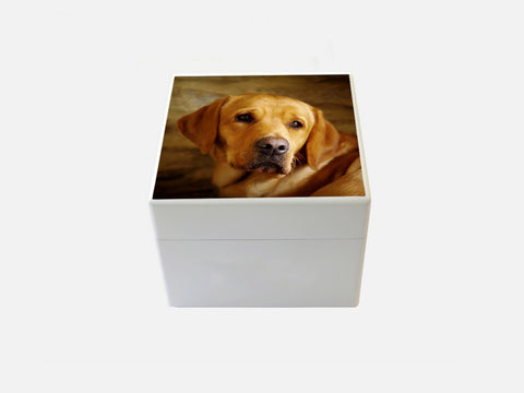 Design your personalised photo box- Small Square