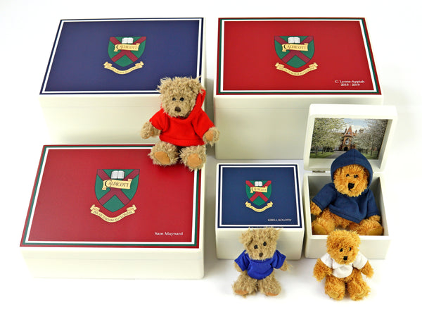 50 x Teddies - with top