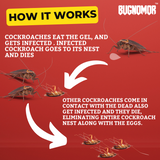 Bugnomor Anti Roach Spot Gel Super Power Cockroach Killer 20g Set of 8