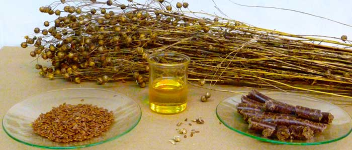 Medicinal Value of Flax and Linen
