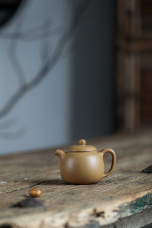 匏尊 Pao Zun 许息根 Xu Xi Gen 150ml  原矿黄金段 Authentic Golden Duanni - The Phans Yixing Zisha Teapot