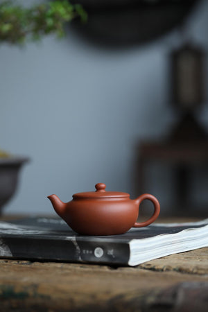 小亭 Xiao Ting 120ML 原矿 老朱泥 Old Zhuni 佘荣飞 She Rong Fei - The Phans Yixing Zisha Teapot