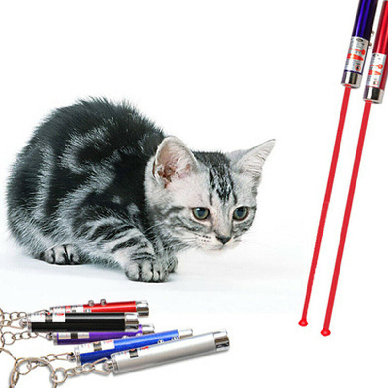 Laser Teaser Pen For Cat Kitten Fun Projecting Flash Pointer - iPro Accessories