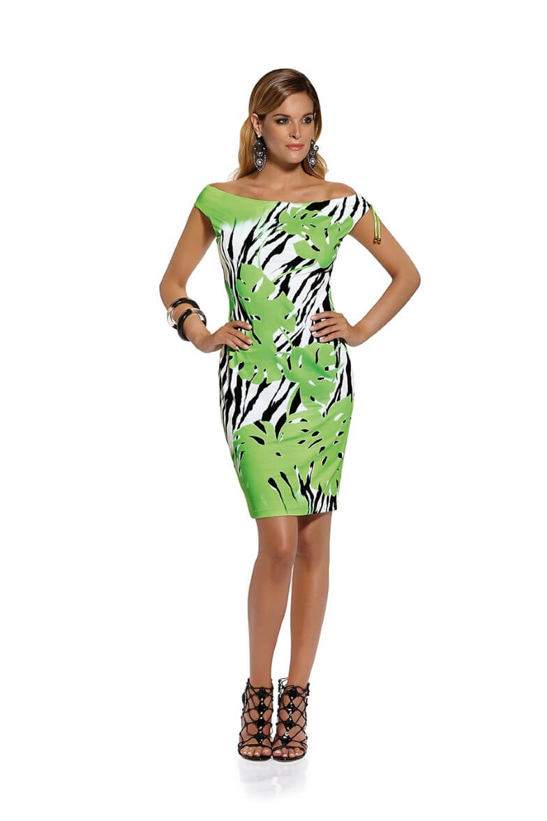 678/02 Roidal Green Print Linsey Dress