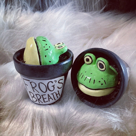 Frog's Breath decor