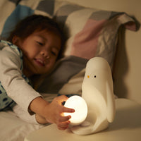 2-in-1 Portable Night Light