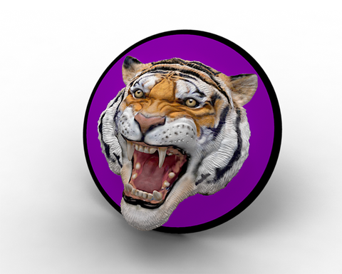 Clemson Tiger Head Magnet