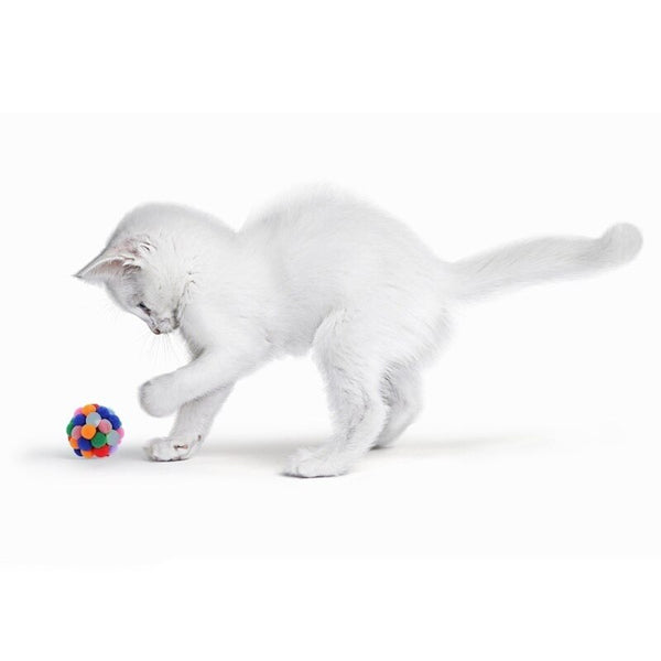 Handmade Funny Cat Toy Ball Catnip Colorful