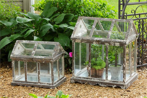 Wood and Glass Greenhouse