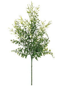 Spanish Fern/Tarragon Spray