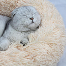 Load image into Gallery viewer, Comfy Calming Cat Bed