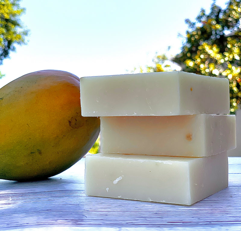 Ahomka Mango Papaya Natural Soap Bar - naturesbeautibar