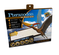 Pteranodon 3D Wood Dino Kit