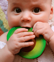 Arnold The Avocado Natural Rubber Teether Oli & Carol Oli & Carol