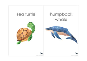 OCEAN ANIMAL FLASH CARDS
