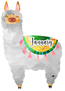 LLAMA BIRTHDAY DISPLAY