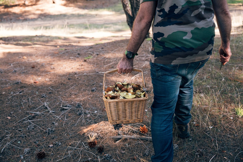 Recipe - Chef Phil's Wild Mushroom Salad