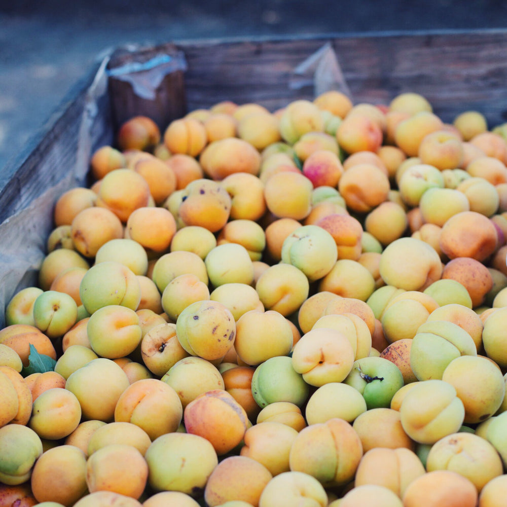 THE SWEET MEADOW - Apricot Jam