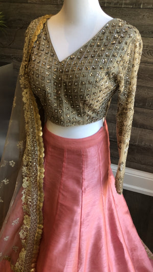 Taupe Handwork Blouse and Lehengha