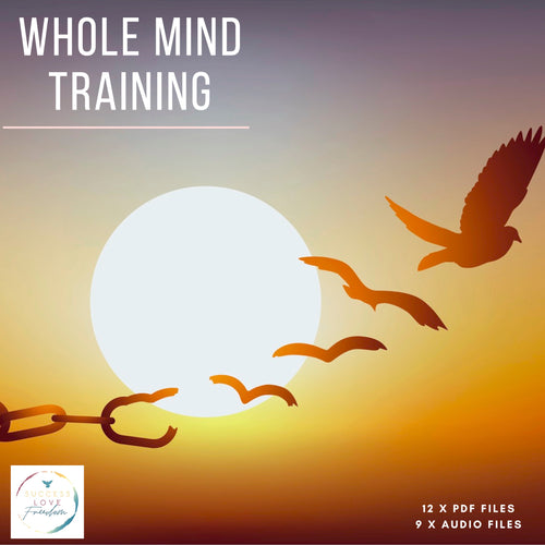 Whole Mind Training - Success Love Freedom