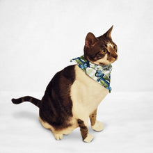 Load image into Gallery viewer, Blue Anchor Cat & Dog Bandana