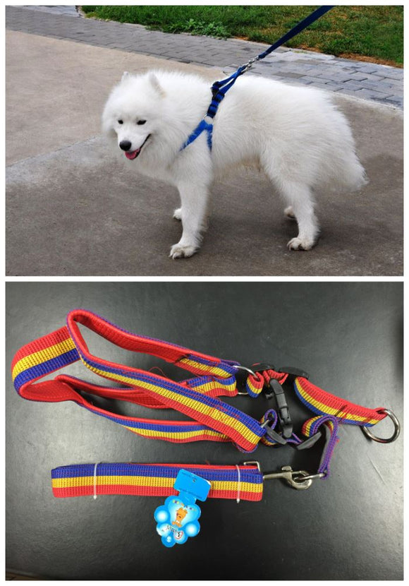 dog-harness-leash-dog-strap-pet-accessories-pet-lash-chest-stap