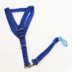 Dog_Harness_with_Leash_foam_collar_Large_04_RJTV3QGAVHJ8.jpg