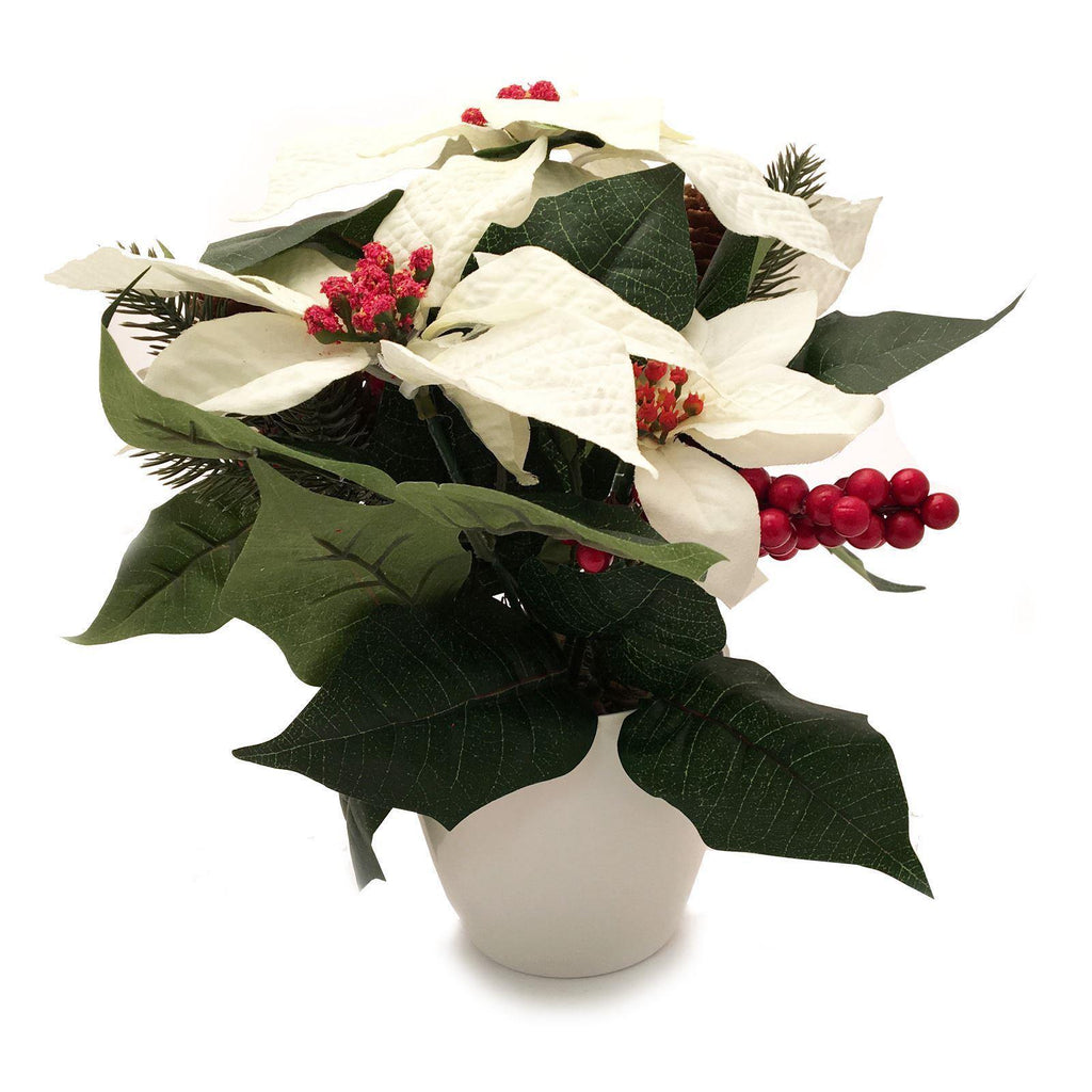 Luxury Cream Potted Poinsettia with Red Berries & Pine Cones