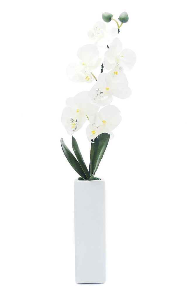 Artificial Orchid in Thin White Vase - White