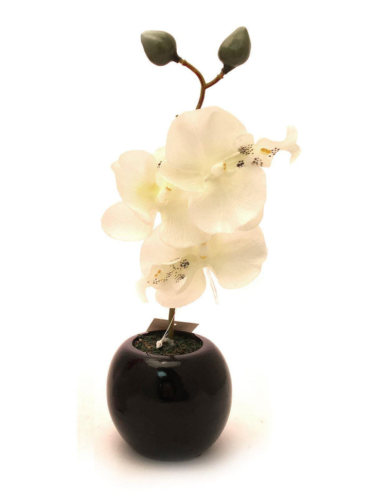 Artificial White Orchid in Black Pot 27cm