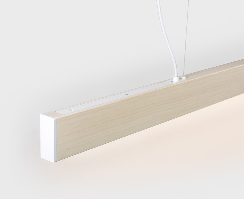 Long Slim Pendant Light | DSHOP