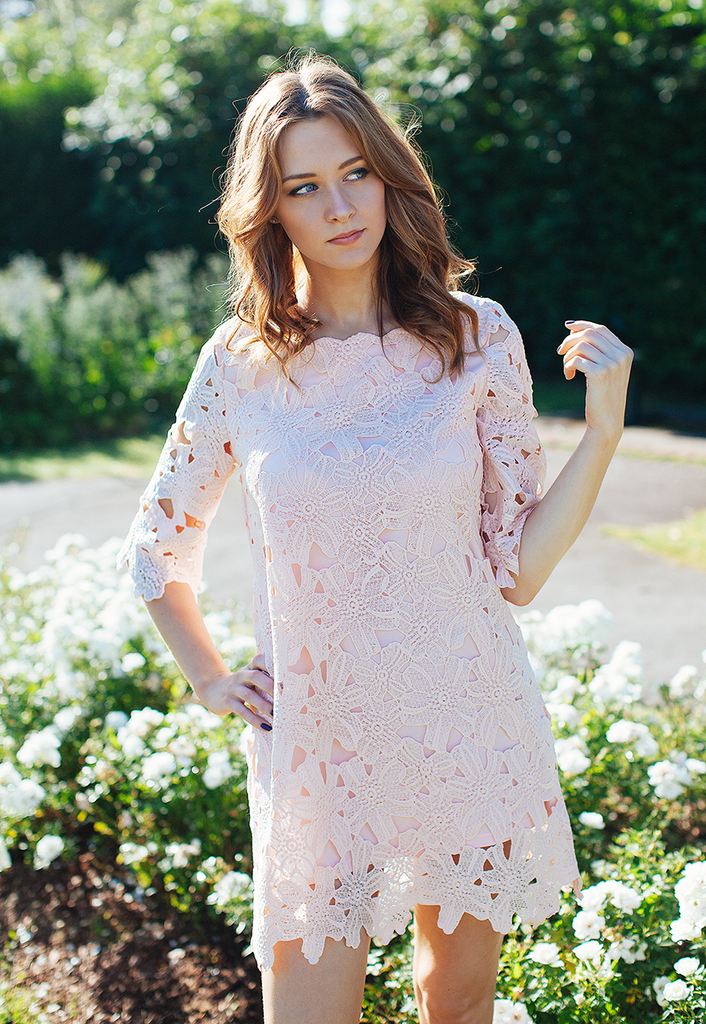 Shift Dress In Lace Cutwork (Pink)