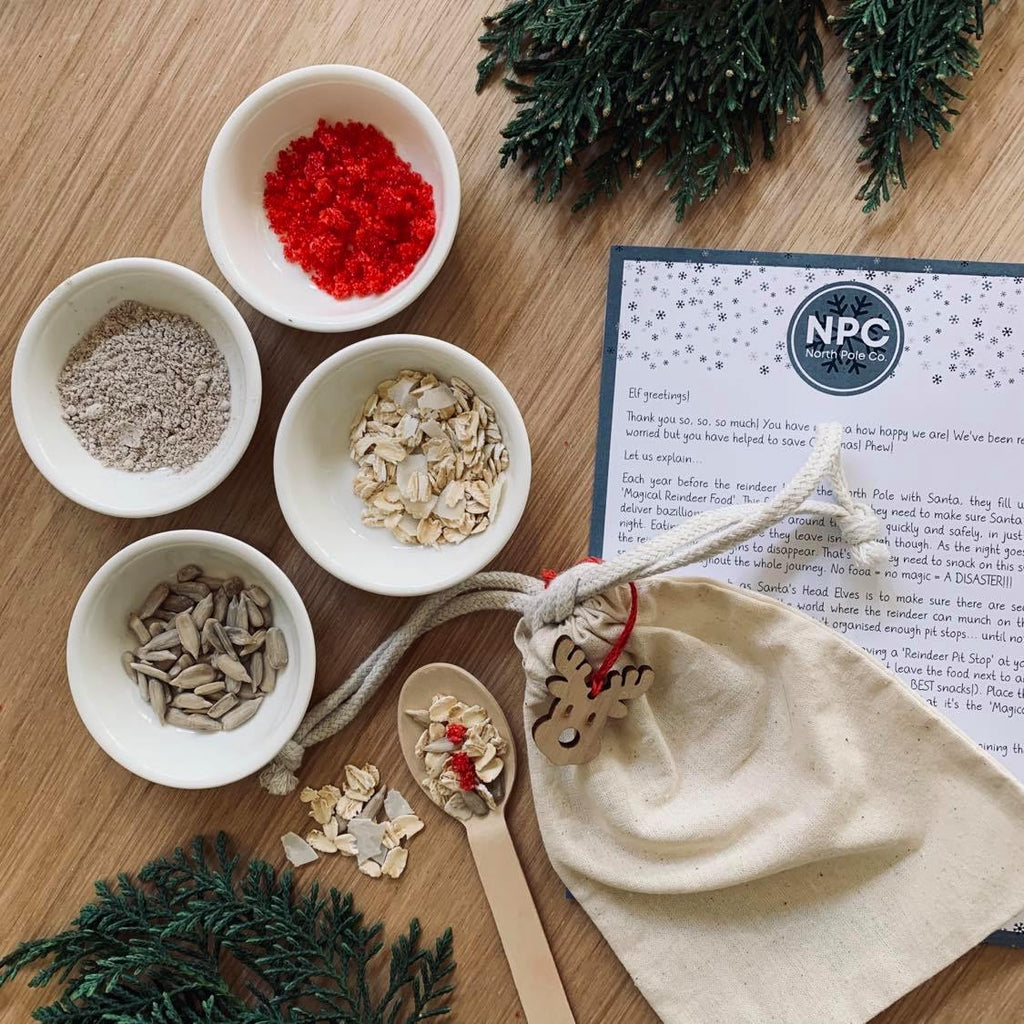 Magical Reindeer Food Mini Kit